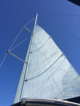 Sail's up!