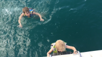 Swimming off the back of the boat